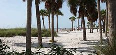 Be sure to try Howard Park in Tarpon Springs! The park is almost completely surrounded by the Gulf of Mexico and the water is clear and refreshing.
