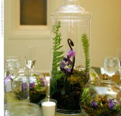 The Centerpieces    The centerpieces were designed to bring the great outdoors into the space. Some of the tables boasted miniature terrariums filled with moss, ferns, fiddleheads, and purple sweet pea.