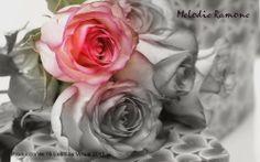 Nature wallpaper desktop pink flowers ideas for 2019