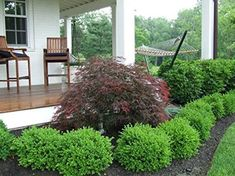 Easy low maintenance landscaping ideas for the front yard … – Garden Landscaping ideas - How to Make Gardening Boxwood Landscaping, Landscaping With Rocks, Outdoor Landscaping, Front Yard Landscaping, Landscaping Ideas, Backyard Ideas, Sidewalk Landscaping, Modern Backyard, House Landscape