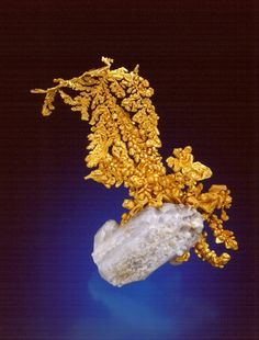 Dendritic formation. Gold in it's crystal form. Because gold is so soft it is usually found in rounded nuggets, veins etc., but it has it's own unique crystal formations, like this one.
