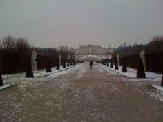 """După căderea vechiului regim, în decembrie 89, Viena a fost prima capitală occidentală asaltată de români. Aici s-a petrecut un episod rămas în folclor pînă azi, cel al """"lebedelor mîncate"""" de nişte compatrioţi, în grădina palatului Belvedere. Ironia sorţii – tot aici ministrul nostru de externe Manoilescu a leşinat în vara lui 1940, cînd a văzut harta cu Transilvania înjumătăţită de Ribbentrop Pesemne, ai noştri ştiau ce ştiau cînd au vînat lebedele!"""