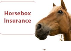 http://www.themoneylion.co.uk/insurancequotes/motorinsurance/horseboxinsurance Horse Box insurance comparison