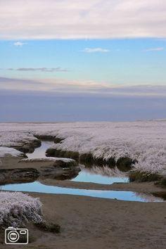 de Slufter op Texel, 's winters