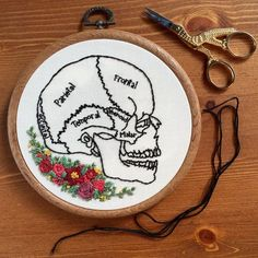 Human skull anatomy hand embroidery with floral detail in vintage style 5 inch hoop