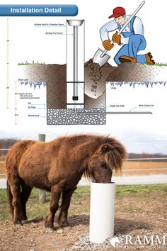 This waterer is great for horses, cattle and other livestock. Horse Shelter, Horse Barn Plans, Horse Fencing, Barn Animals, Mini Farm, Backyard Farming, Horse Tips, Horse Stalls, Hobby Farms