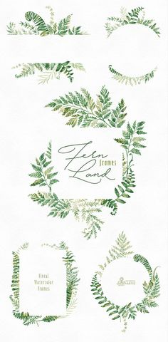 The Ferns Collection of 9 high quality hand painted watercolor floral Frames and Arrangements. Perfect graphic for wedding invitations, greeting cards, photos, posters, quotes and more. -------------