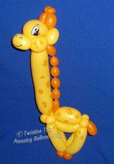 Everyday balloon Models                                                                                                                                                                                 More