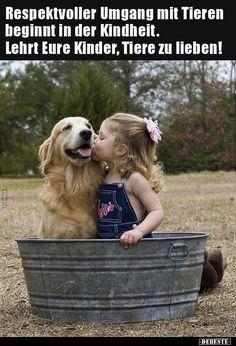 Respektvoller Umgang mit Tieren beginnt in der. Dogs Golden Retriever, Labrador Retriever, Animals Beautiful, Cute Animals, Beautiful Things, Animal Pictures, Funny Pictures, Morning Cuddles, Farm Lifestyle