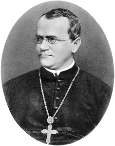 July 20, 1822 - Gregor Mendel who gained fame as the founder of the modern science of genetics is born in Hynčice