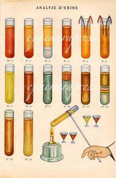 urinalysis glorious science medical print by EPHEMERApress on Etsy, $10.50