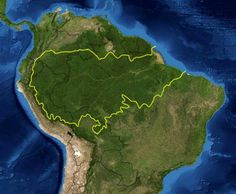 Brazil Launches New Security Force to Tackle Rainforest Deforestation Rainforest Facts For Kids, Amazon Rainforest Facts, Rainforest Map, Rainforest Project, Rainforest Deforestation, Rainforests, Ecuador, Theme Nature, Amazon River