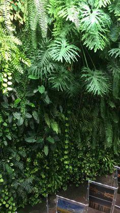 Green wall Poland Galery Przymorze