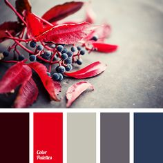 Color Palette blue color, burgundy color, color matching, color matching in interior, color of Red Colour Palette, Colour Schemes, Color Combos, Bedroom Red, Bedroom Colors, Trendy Bedroom, Red Bedrooms, Cottage Bedrooms, Bedroom Ideas