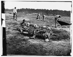 African Americans Collecting Bones of Soldiers Killed in the Battle  - Cold Harbor, VA, April 1865