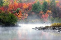 The leaves are changing colors on the banks of Dead River (Western Maine, Maine Huts & Trails)