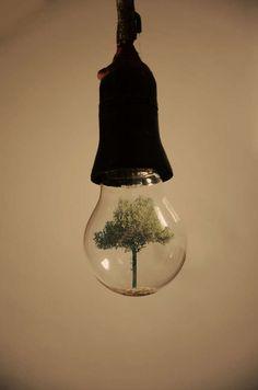 Surrealist Lightbulb Art - Adrian Limani Encapsulates His Imagination in a Lightbulb (GALLERY)