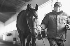 Cozmic One  last day at Belmont off to California. Photo by Kyle Acebo 12/2014