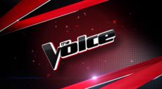 The Voice is an American reality television singing competition broadcast on NBC. Based on the original The Voice of Holland, the concept of the series is to find new singing talent contested by aspiring singers, age 15 or over, drawn from public auditions. The winner is determined by television viewers voting by telephone, Internet, SMS text, and iTunes Store purchases of the audio-recorded artists' vocal performances. They receive US$100,000 and a record deal with Universal Music Group for…