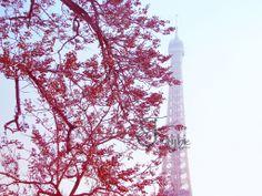 <3 New Paris