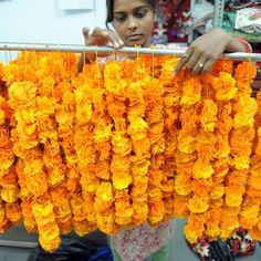 DIY Indian Flower Garland...   Put these indian flowers in the banana leaf boat