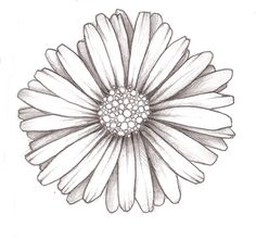 daisy doodle by vickinerino, via Flickr