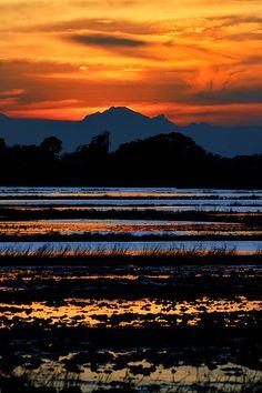[Sunset Layers]    Candaba Wetlands, Pampanga, Philippines