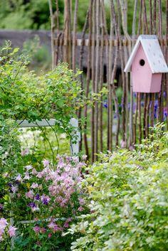 Die 1524 Besten Bilder Von Gartengestaltung Garten Ideen In 2019