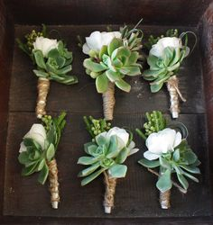 wedding bouquet with succulents and roses   White ranunculas and echeveria boutonnieres accented with brasilia ...