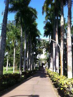 University of Puerto Rico Rio Piedras | Puerto Rico | Pinterest ...