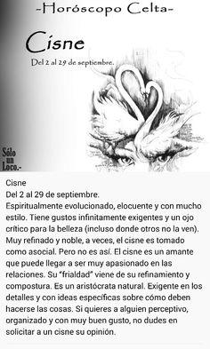 Cisne (2 - 29 sept)