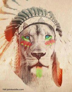 Lion leão indio desenho