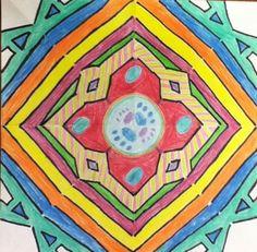 """Radial Symmetry Grade 5 Blue Mountain """"Ally"""""""