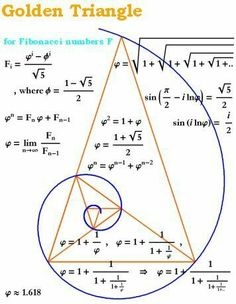 The Golden Ratio in a Spiral and Triangle (Fibonacci Numbers, Geometry) Golden Ration, Divine Proportion, Pseudo Science, Science Art, Fibonacci Spiral, Fibonacci Number, Fibonacci Sequence Art, Fibonacci Tattoo, E Mc2