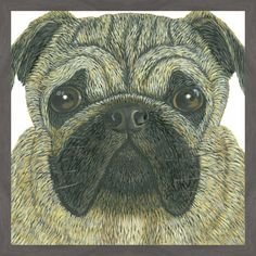 'Pug' Framed Painting Print