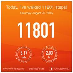 Saturday, August 20, 2016 - 11801 steps