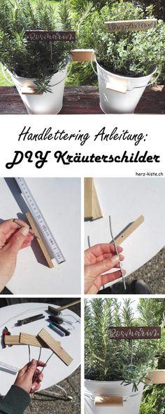 DIY und Handlettering Anleitung: Wie du ganz einfach mit einem Hölzchen und etwas Draht deine Kräuter und dein Gemüse wunderschön beschriften kannst. Ein Garten-DIY mit Handlettering.