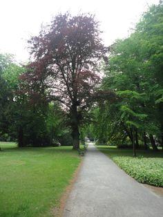 Walking the Lenne designed parks in Bad Oeynhausen