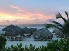 Our free trip with Scentsy! Join today and start earning towards your free trip! ➡️ https://phillipsac.scentsy.us/join Punta Cana, Free Travel, Marina Bay Sands, Scentsy, Join