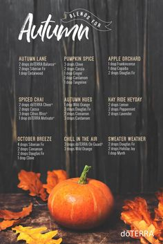 Happy First Day of Fall! Diffuse these blends to fill your home with the sweet scents of Autumn.
