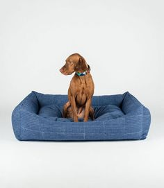 Blue Heart - Hand Block Bolster Dog Bed by FILLYDOG by fillydogco on Etsy https://www.etsy.com/listing/226370526/blue-heart-hand-block-bolster-dog-bed-by