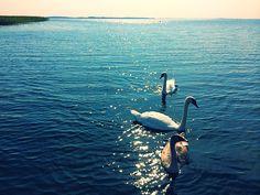 September - Sniardwy biggest Polish lake
