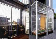 Asahi Kasei, a Japanese house building company, has designed an apartment filled with features especially designed for cats. The feline-friendly home includes Dream Home Design, House Design, Cat Fence, One Step Beyond, Cat Enclosure, Cat Climbing, Building Companies, Japanese House, Paradis