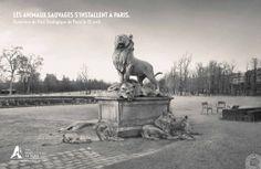Parc zoologique de Paris (Publicis, 2014)