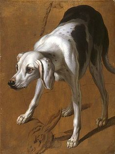 François Desportes - Study of a Pointer - The Morgan Library & Museum - Collections