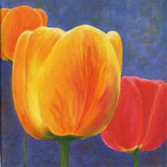 Yellow Tulip by Astrid Paustian
