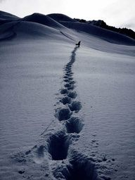 You have to earn your turns in the backcountry