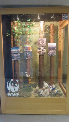 WWF window display