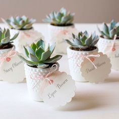 Guarantee Your Wedding Won't Succ With These Creative Ways To Use Succulents - Wilkie Blog! - Personalized mini potted succulent favors