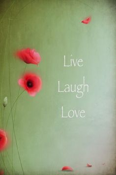 Live Laugh Love Iphone Wallpaper : Live Love Laugh on Pinterest Live Laugh Love, Live Laugh ...